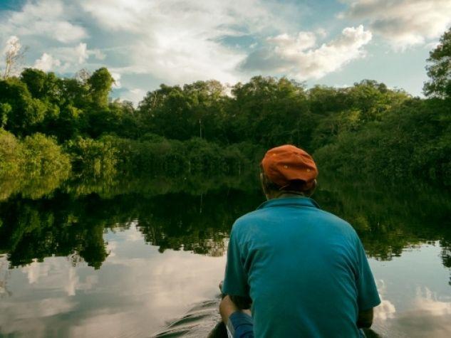 Uno scorcio della foresta pluviale amazzonica