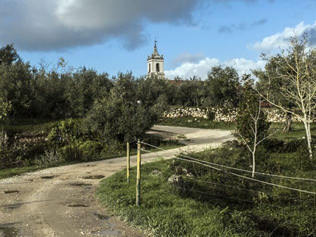 Coimbra, scorcio del monte dos olivais