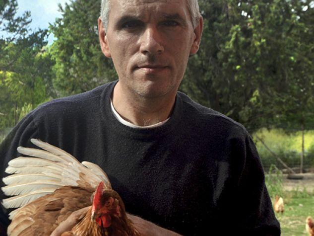 Allevamento di galline alla Fattoria sociale Villa Mancini nel beneventano