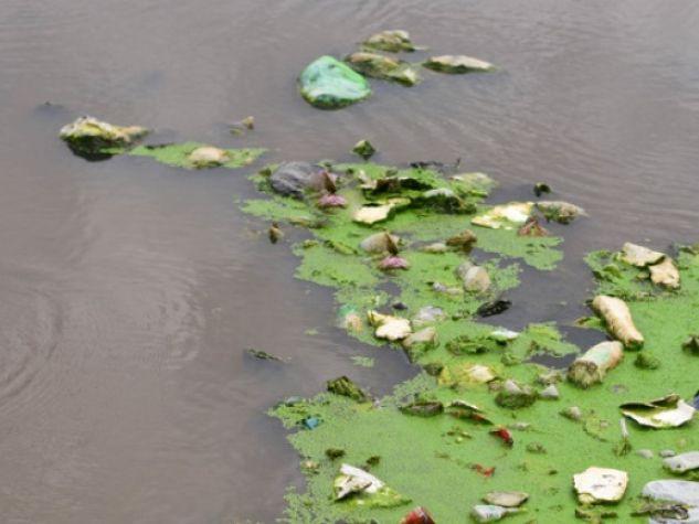 Acque inquinate dai rifiuti.