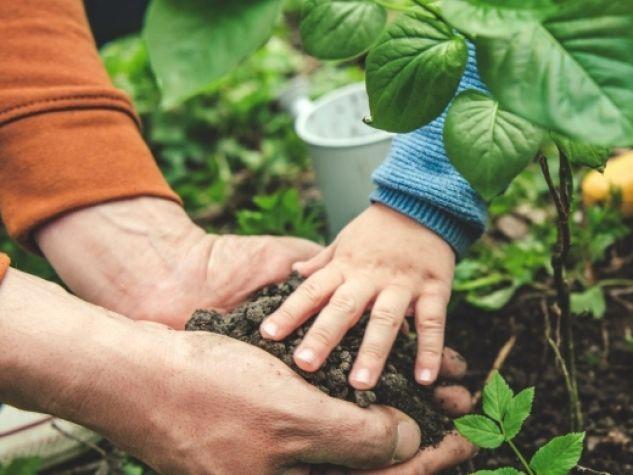 Coltivare la terra.