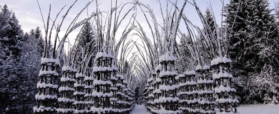 la cattedrale vegerale modellata dalla neve