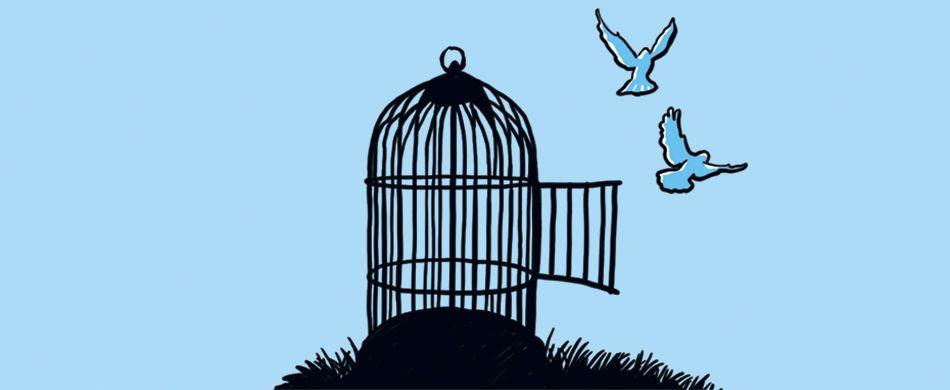 gabbia per uccellini aperta
