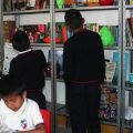 Tutti dentro, è ora di studiare.  - Ogni scuola verde è corredata di scaffali, banchi, sedie e biblioteca.