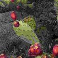 Wayne Suggs (Stati Uniti), Orgam Mountains - Desert Peaks, New Mexico, USA. - Per gentile concessione del concorso fotografico «Landscape Photographer of the Year» (2020).