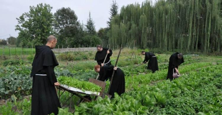 frati lavorano l'orto