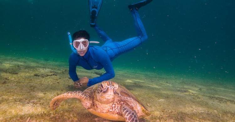 Alessandra Giannascoli in immersione